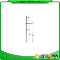 """Wholesale Durable Steel Garden Plant Supports / Grow Through Plant Supports Plastic Coated 11"""" W x 35"""" H overall from china suppliers"""