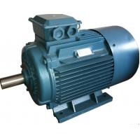 Wholesale GOST Standard y2 3 Phase 4 Pole Induction Motor / Three Phase Electric Motor from china suppliers