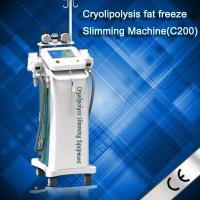 Wholesale Newest Zelitq Cryolipolysis Fat Dissolved Machine With Cold Wave Cooltherapy Beauty from china suppliers