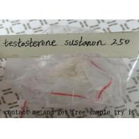 Wholesale Testosterone Sustanon 250 For Muscle Building , Testosterone Blend Powder from china suppliers