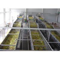 Wholesale Apple Orange Juice Extractor Aseptic Big Bag Package Turn Key Projects from china suppliers