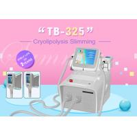 Wholesale Portable Home Use Cryolipolysis Fat Freeze Slimming Machine Color Screen Operating from china suppliers
