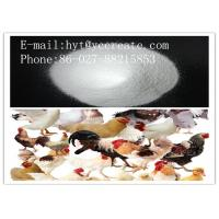 Wholesale Carnidazole Veterinary Pharmaceuticals Raw Materials CAS 42116-76-7 MF C8H12N4O3S from china suppliers