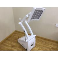 Wholesale Professional 7 Colors Infrared LED Light Therapy Skin Care Device TGA Approved from china suppliers