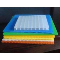 Quality Polypropylene Transparent Panel for sale