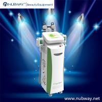 Wholesale Woman Home Weight Loss Body Fat Freezing Cryolipolysis Machine from china suppliers
