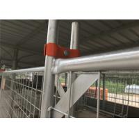 Wholesale Temporary Fence clamp 80mm ,90mm ,100mm center distance full hot dipped galvanized Australia Made In China 100% quality from china suppliers