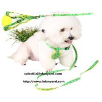 Wholesale Waist Pet Dog Leash Running Jogging Dog Lead Collar Adjustable Sport Walking Leash from china suppliers