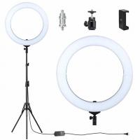 Wholesale Flashpoint Fluorescent Ring Light With Stand , Video Shooting Photo Ring Light from china suppliers