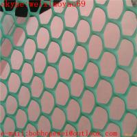 Wholesale 120g PE and white color plastic flat netting from china suppliers