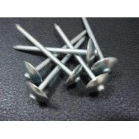 Wholesale Roofing Nail with Umbrella Head Plain Shank from china suppliers