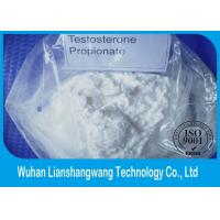Wholesale CAS 57-85-2 White Testosterone Anabolic Steroid , Muscle Enhancing Steroids Test Prop from china suppliers