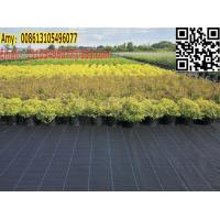 Wholesale green house / garden black weed control cover fabric for weed barrier mat from china suppliers