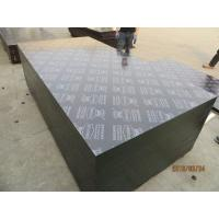 Wholesale KINGPLUS FILM FACED PLYWOOD ,Top quality Brown film faced plywood/18mm for Australia market from china suppliers