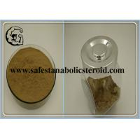 Wholesale Theobromine Natural Weight Loss Powder CAS 83-67-0 Fat Burning Cocoa Extract Powder from china suppliers