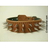 Spiked leather dog collar with extra punks