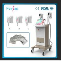 Wholesale effective cryolipolysis fat freeze slimming machine with 12 inch touch display from china suppliers