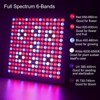 Wholesale Waterproof Full Spectrum LED Grow Lights With 660nm - 450nm Wavelengh from china suppliers
