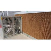 Wholesale brown greenhouse evaporative cooling cell pad from china suppliers