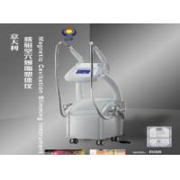 Wholesale Magnatic vibration and Body slimming Cavitation Machine RG9 from china suppliers