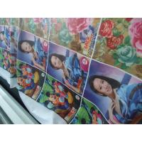 Wholesale 100% Polyester Windows Curtain / Flag Fabric 110-250 G / GSM from china suppliers
