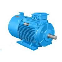 Quality YC electric motor for sale