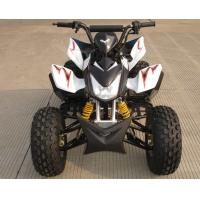 Wholesale Mid Size Four Wheel ATV 110cc Fully Automatic With Reverse Front Double Drum Brake from china suppliers