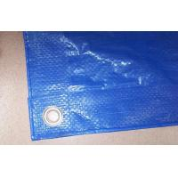 Wholesale blue color pe tarpaulin,high quality tarpaulin,low price poly tarp from china suppliers