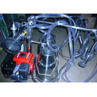 Wholesale Gasoline / Oil Engine Motor Portable Milking Machine for Cows , Sheep and Goats from china suppliers