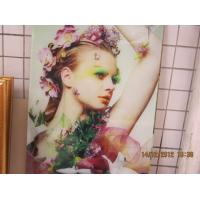 Wholesale 1.3m eco solvent Glass flatbed printer from china suppliers