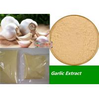 Wholesale 80 - 100 Mesh Organic Garlic Powder / Allicin Powder Extract Anti Fatigue from china suppliers