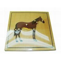 Wholesale Montessori Puzzle Horse from china suppliers
