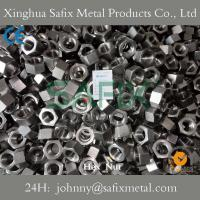 Quality Stainless Steel Hex Nut/ Heavy Hex Nut/ Normal Hex Nut 316(A4-80) 304(A2-70) for sale