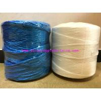 Wholesale Agricultural Polypropylene String PP Twine With High Breaking Strength from china suppliers