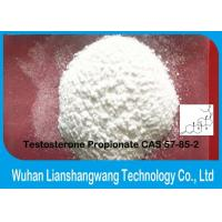 Quality Bodybuilding Testosterone Propionate High Purity Nutrobal Muscle Growth Anabolic steroids raw powder for sale