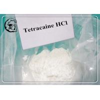 Wholesale Tetracaine Hcl / Tetracaine Hydrochloride Pain Killer Powder  CAS 136-47-0 from china suppliers
