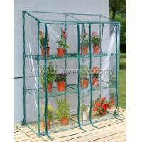 Wholesale Steel Tube Greenhouse-Mini Series-143 x 38 x 143CM-PVC from china suppliers