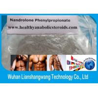 Wholesale CAS 62-90-8 Deca Durabolin Steroid Npp , Nandrolone Phenylpropionate Powder for Weight Loss from china suppliers