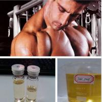 Buy cheap CAS 53-41-8 Anti Estrogen Steroids Androsterone for Bodybuilding C19H30O2 from wholesalers