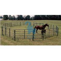 Wholesale Square Portable Horse Corral Panels Gate , Silver / Green Horse Round Pen Panels from china suppliers