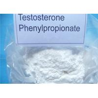 Wholesale Bodybuilding Testosterone Phenylpropionate 99% High Purity  1255-49-8 from china suppliers