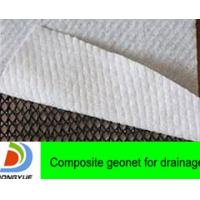 Wholesale composite geonet for drainage from China from china suppliers