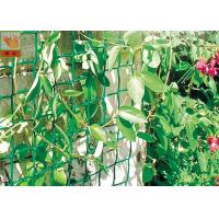 Plastic Garden Netting For Climbing Plants , Garden Fence Roll With UV Stabilized