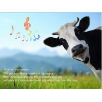 Wholesale Phone number track location gps sheep animal tracking RF-V26 with free apps from google pl from china suppliers