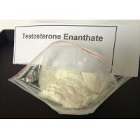 Wholesale White Powder Testosterone Steroid Test Enanthate CAS 315 37 7 Male Sex Hormone from china suppliers