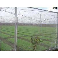 Wholesale Insect Screen 18*16/14*16 from china suppliers