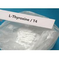 Wholesale CAS 51-48-9 Oral Injectable Anabolic Steroid White Powder T4 / L-Thyroxine For treating hypothyroidism from china suppliers