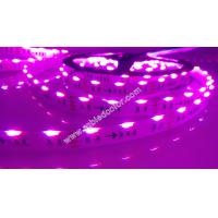 Wholesale rgb side emitting led strips light 5m 300led 14.4w multicolor flex led tape light from china suppliers