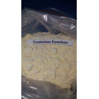 Wholesale Trenbolone Enanthate Muscle Gaining Steroids Yellow Powder Muscle Growth from china suppliers