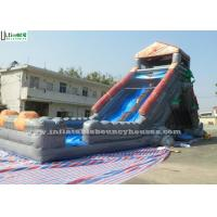 Wholesale Halloween Haunted Water Slide Bounce House , Kids Inflatable Pool Slide from china suppliers
